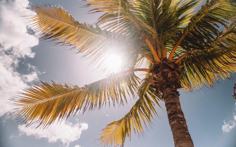 | Αλλεργία στον ήλιο: Πώς θα την αντιμετωπίσεις! | #Hx2com